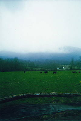 Appalachian Pasture Art Print