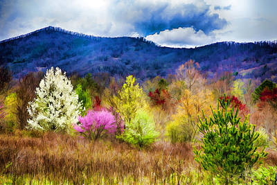 Photograph - Appalachian Spring In The Holler by John Haldane