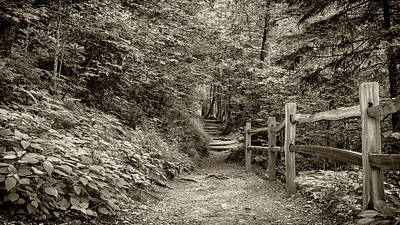 Green Cherokee Photograph - Appalachian Trail At Newfound Gap - Sepia by Stephen Stookey