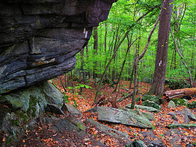 Photograph - Appalachian Trail Connecticut Rocks by Raymond Salani III