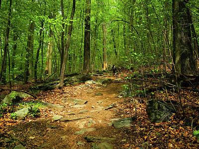 Photograph - Appalachian Trail Down From Weverton Cliffs by Raymond Salani III