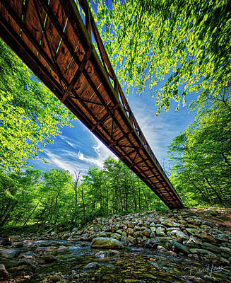 Photograph - Appalachian Trail Foot Bridge by David A Lane