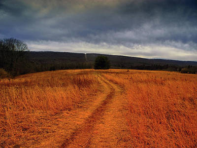 Photograph - Appalachian Trail Heading North In Pa Section 7 by Raymond Salani III