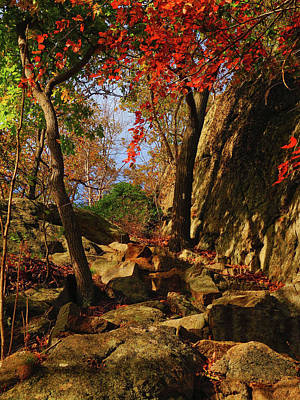 Photograph - Appalachian Trail Heads Up Bear Mountain by Raymond Salani III