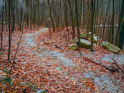 Photograph - Appalachian Trail Heads Up Denning Hill In Ny by Raymond Salani III