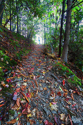 Photograph - Appalachian Trail Hike by David A Lane