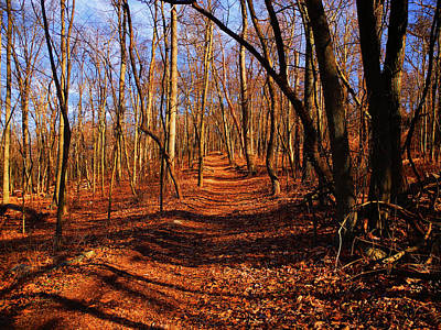 Photograph - Appalachian Trail In Maryland Near Wolfsville by Raymond Salani III