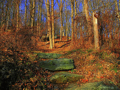 Photograph - Appalachian Trail In Ny by Raymond Salani III