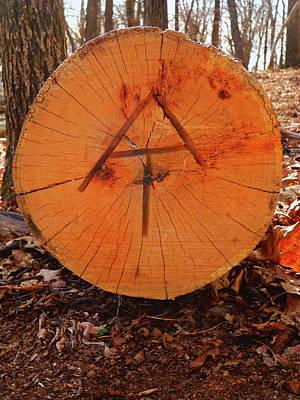 Photograph - Appalachian Trail Maryland Trail Marker by Raymond Salani III