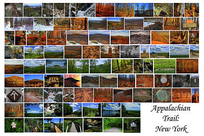 Photograph - Appalachian Trail New York by Raymond Salani III