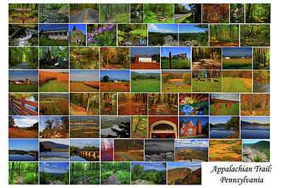 Photograph - Appalachian Trail Pennsylvania by Raymond Salani III
