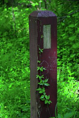 Photograph - Appalachian Trail Sign In Maryland Along The Potomac by Raymond Salani III