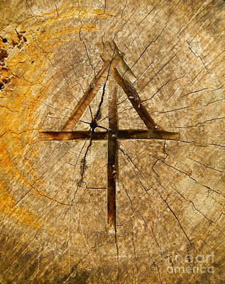 Photograph - Appalachian Trail Symbol In A Log by Glenn Gordon