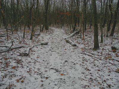 Photograph - Appalachian Trail With Light Snow by Raymond Salani III