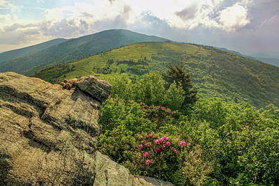 Photograph - Appalachian Trails by Jessica Brawley