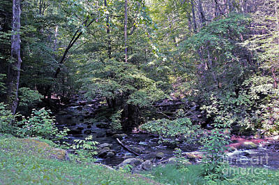 Photograph - Appalachian Waters 3 by Lydia Holly