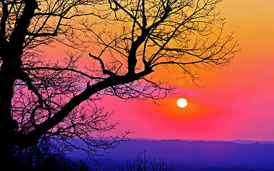 Photograph - Appalcahian Sunset Tree Silhouette  #1 by The American Shutterbug Society