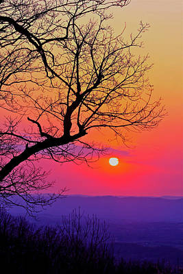 Photograph - Appalcahian Sunset Tree Silhouette #2 by The American Shutterbug Society