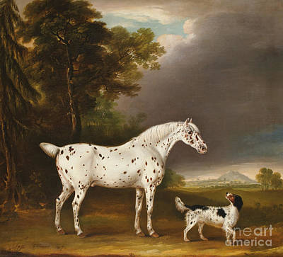 Appaloosa Horse And Spaniel Art Print