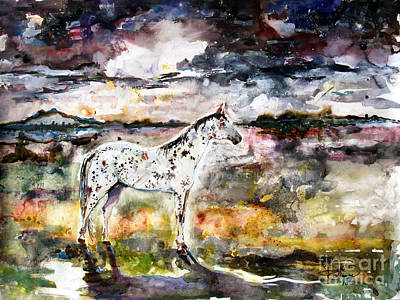 Painting - Appaloosa Spirit Horse by Ginette Callaway