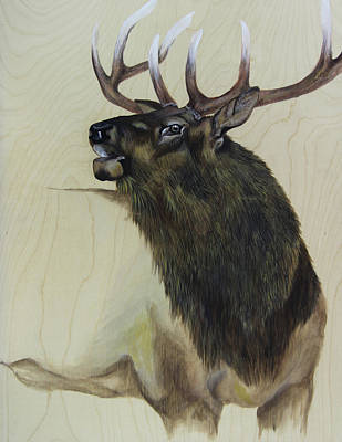 Elk Painting - Apparition by Lacey Hermiston