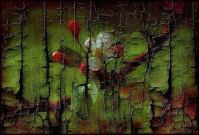 Photograph - Apple Blossom--cracked Look by Sherman Perry