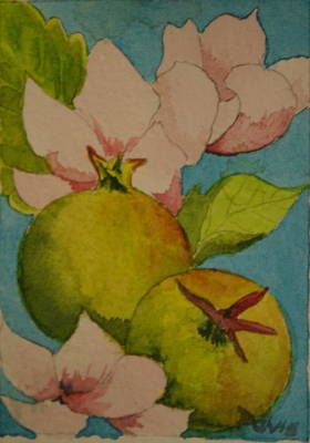 Painting - Apple Blossom by Phil Davis