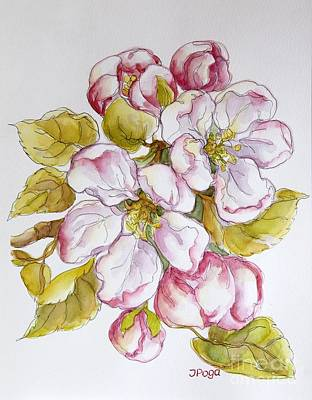 Painting - Apple Blossoms by Inese Poga