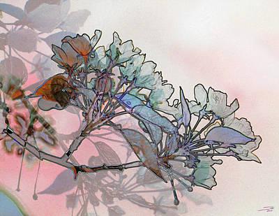 Apple Blossoms Art Print by Stuart Turnbull