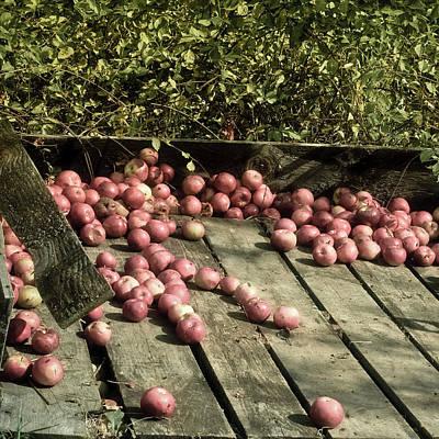 Photograph - Apple Cart In Autumn - Vintage Art by Joann Vitali