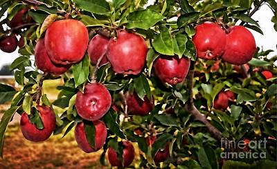Photograph - Apple Delight  by Luther Fine Art