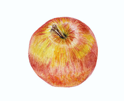 Painting - Apple by Elizabeth Lock