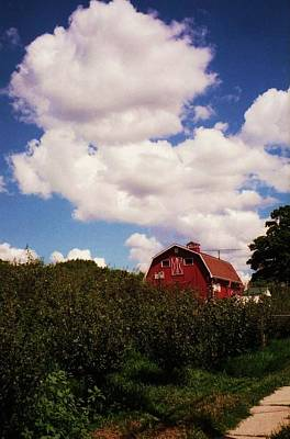 Photograph - Apple Farm by John Scates