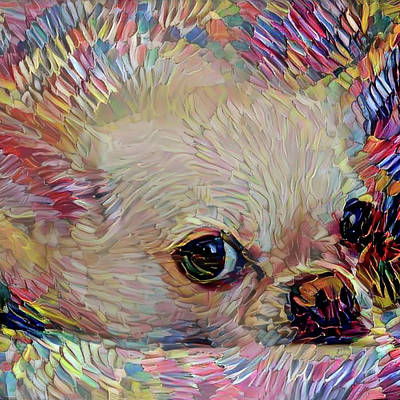Mixed Media - Apple Head Chihuahua - Square by Peggy Collins
