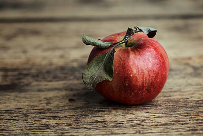 Red Leaves Photograph - Apple by Nailia Schwarz