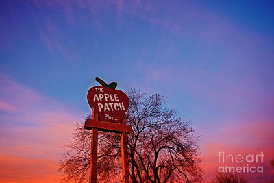 Photograph - Apple Patch Sign by David Arment