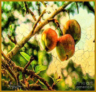 Mixed Media - Apple  Season by MaryLee Parker