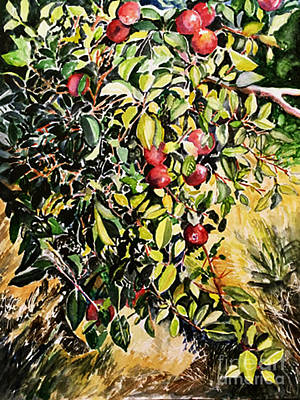 Art Print featuring the painting Apple Tree by Priti Lathia