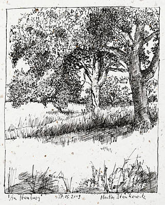 Drawing - Apple Trees Plein Air Ink Drawing by Martin Stankewitz
