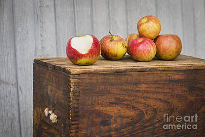 Photograph - Apple Wood by Joann Long