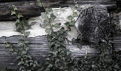 Photograph - Appleberry Mountain 3 by Pete Hellmann