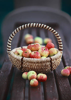 Photograph - Apples In The Basket  by Yana Shonbina