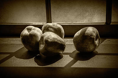 Photograph - Apples In The Sun Light By The Window In Sepia Tone by Randall Nyhof