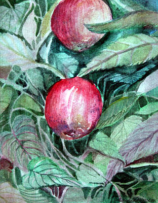 Apples Original by Mindy Newman