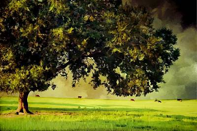 Pasture Scenes Digital Art - Approaching Summer Storm by Jan Amiss Photography