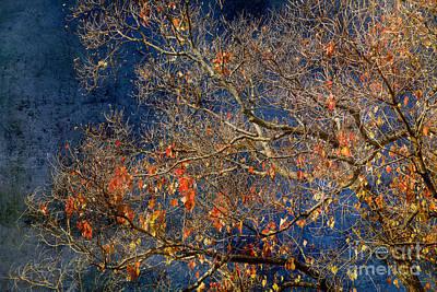 Approaching Winter Art Print by Russ Brown