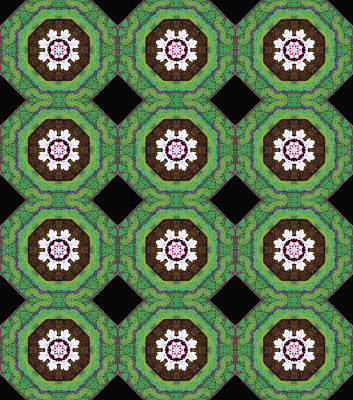 Photograph - Apricot Blossom Kaleidescope Pattern by Dorothy Berry-Lound