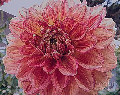 Mixed Media - Apricot Dahlia Flower With Drawing Effect by Rose Santuci-Sofranko