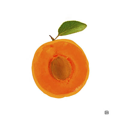 Painting - Apricot II by Lisa Weedn