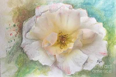 Painting - Apricot Nectar Rose by Ryn Shell